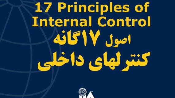 اصول ۱۷گانه کنترلهای داخلی